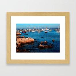 Harbor Life Framed Art Print