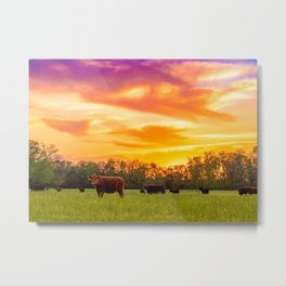 Sunset Herd 3 Metal Print