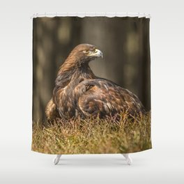 Grounded Eagle Shower Curtain