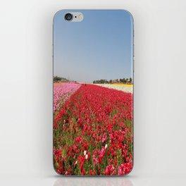 Flower fields iPhone Skin