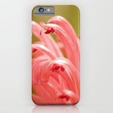 Pink spring 413 iPhone 6 Slim Case
