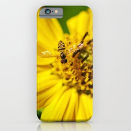 Hovering in the Sun iPhone Case
