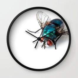 Blowfly Wall Clock