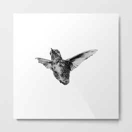Hummingbird in flight by annmariescreations Metal Print