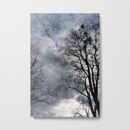 empty nests Metal Print