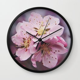 Pink Peach Blossoms Wall Clock