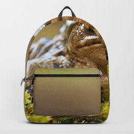 Portrait of a common frog Backpack