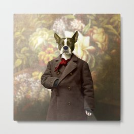 Barney the Boston Terrier in the Arboretum Metal Print