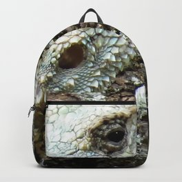 Plated Lizard Backpack