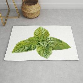 Mint Lamiaceae Labiatae deadnettle sage aromatic culinary herbs Rug