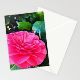 Brilliant Rose Stationery Cards