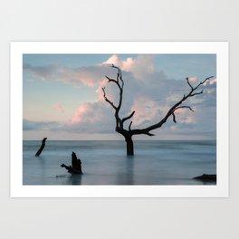 Bull Island Dawn Art Print