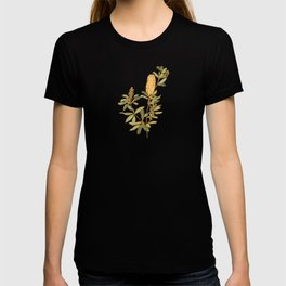 Banksia on Indigo Blue Botanical Illustration T-shirt