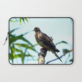 Mourning Dove Laptop Sleeve