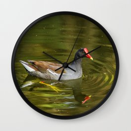 Common Gallinule No. 2 Wall Clock
