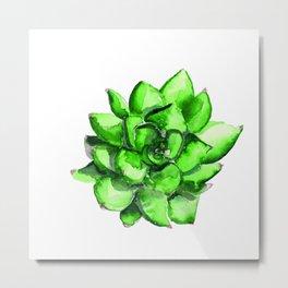 Green Watercolor Succulent | Mohntage Metal Print