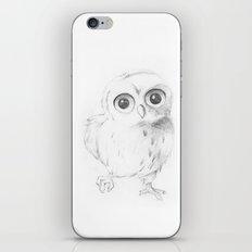 Sweet Little Owl iPhone Skin