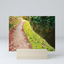 Autumn path Mini Art Print