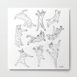 Flying Cats Metal Print