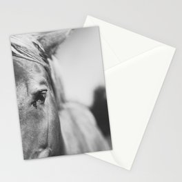 The Spirited Horse Stationery Cards