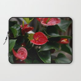 Reds and Greens Laptop Sleeve