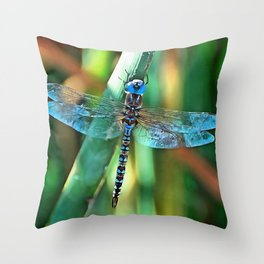 Fantasy Dragonfly In Turquoise and Black Throw Pillow