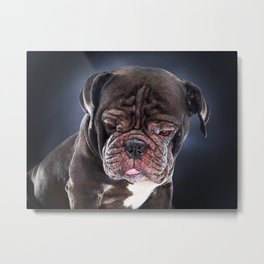 Super Pets Series 1 - Sad Liam Metal Print