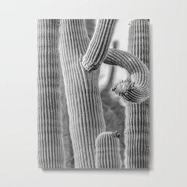 Cactus Textures, Southwest Desert Art by Murray Bolesta Metal Print