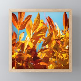 Autumn colors leaves against the blue sky #decor #society6 Framed Mini Art Print