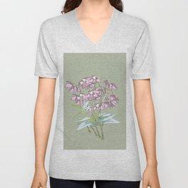 Pink Rock Lily Dendrobium kingianum Unisex V-Neck
