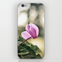 Ciclamino iPhone Skin