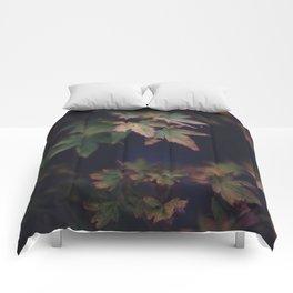 Hints of Autumn Comforters
