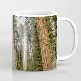 Sequoias in the Fog Coffee Mug