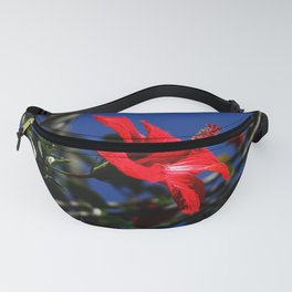 red hibiscus on dack blue Fanny Pack