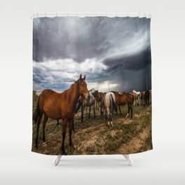 Pride - Horse Watches Over Herd as Storm Approaches Shower Curtain