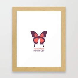 Ulysses Butterfly 3 Framed Art Print