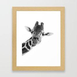 Giraffe Portrait // Grey Wild Animal Cute Zoo Safari Madagascar Wildlife Nursery Decor Ideas Framed Art Print
