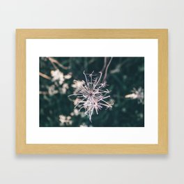 Beauty in Death Framed Art Print