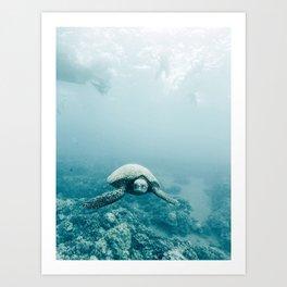 Sea Turtle Adventures Art Print