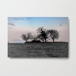 fairy world Metal Print