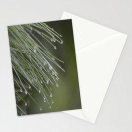 Raindrops on Pine Tree Macro Nature Photography - Anticipation Stationery Cards