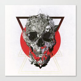 Skull Tale Canvas Print