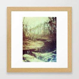 Creek Framed Art Print