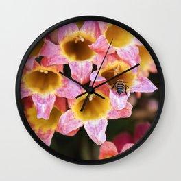Tangerine Beauty Cross Vine with a Bumblebee Wall Clock