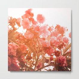 oleander series // no. 4 Metal Print
