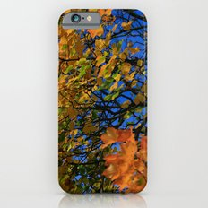 The Burning Tree Slim Case iPhone 6s