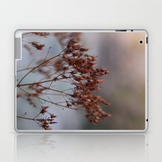 In The Frost Laptop & iPad Skin