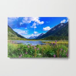 God's Country - IV, Alaska Metal Print