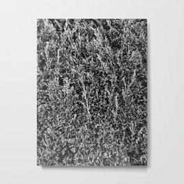 Leaves on leaves. Metal Print