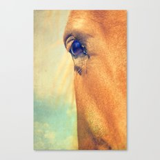 Horse Dreaming Canvas Print